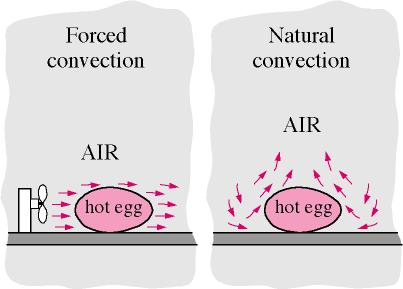 Forced Convection Vs Natural Convection